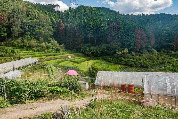 The Most-Remote Fields -- Uji, Kyoto, Japan -- Copyright 2016 Jeffrey Friedl, http://regex.info/blog/ -- This photo is licensed to the public under the Creative Commons Attribution-NonCommercial 4.0 International License http://creativecommons.org/licenses/by-nc/4.0/ (non-commercial use is freely allowed if proper attribution is given, including a link back to this page on http://regex.info/ when used online)