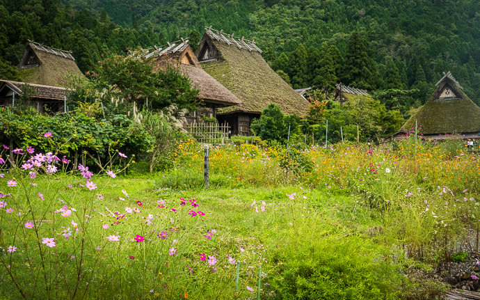 thached-roof houses in Miyama, Japan (美山)