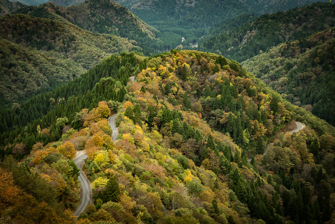 Autumn Encroaches on Onyu Pass Onyu Pass (おにゅう峠) Monday, Oct 31, 2016 -- Takashima, Shiga, Japan -- Copyright 2016 Jeffrey Friedl, http://regex.info/blog/ -- This photo is licensed to the public under the Creative Commons Attribution-NonCommercial 4.0 International License http://creativecommons.org/licenses/by-nc/4.0/ (non-commercial use is freely allowed if proper attribution is given, including a link back to this page on http://regex.info/ when used online)