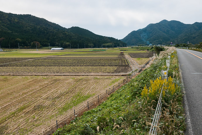 Farmer Works His Fields -- Obama, Fukui, Japan -- Copyright 2016 Jeffrey Friedl, http://regex.info/blog/ -- This photo is licensed to the public under the Creative Commons Attribution-NonCommercial 4.0 International License http://creativecommons.org/licenses/by-nc/4.0/ (non-commercial use is freely allowed if proper attribution is given, including a link back to this page on http://regex.info/ when used online)