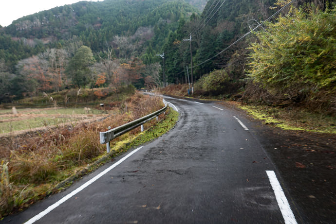 Evidence of Very Recent Rain 8:40am - taken while cycling at 19 kph (12 mph) -- Otsu, Shiga, Japan -- Copyright 2016 Jeffrey Friedl, http://regex.info/blog/ -- This photo is licensed to the public under the Creative Commons Attribution-NonCommercial 4.0 International License http://creativecommons.org/licenses/by-nc/4.0/ (non-commercial use is freely allowed if proper attribution is given, including a link back to this page on http://regex.info/ when used online)