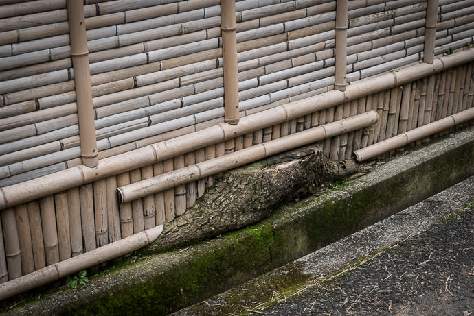 Muko, Kyoto, Japan -- Copyright 2017 Jeffrey Friedl, http://regex.info/blog/ -- This photo is licensed to the public under the Creative Commons Attribution-NonCommercial 4.0 International License http://creativecommons.org/licenses/by-nc/4.0/ (non-commercial use is freely allowed if proper attribution is given, including a link back to this page on http://regex.info/ when used online)
