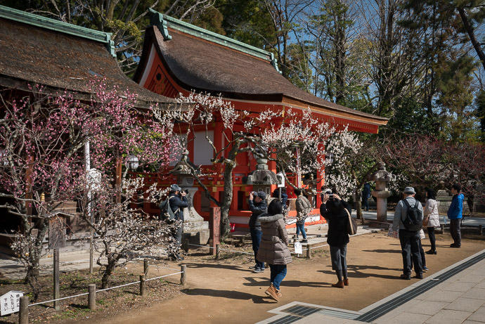Kitano Tenman-gu Shrine (北野天満宮) -- Kyoto, Japan -- Copyright 2017 Jeffrey Friedl, http://regex.info/blog/ -- This photo is licensed to the public under the Creative Commons Attribution-NonCommercial 4.0 International License http://creativecommons.org/licenses/by-nc/4.0/ (non-commercial use is freely allowed if proper attribution is given, including a link back to this page on http://regex.info/ when used online)