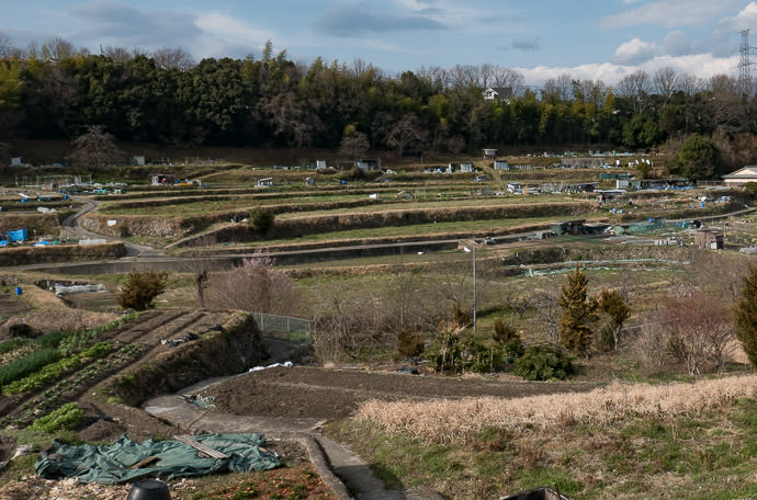 Mini-Plot Farms just another day in the countryside -- Kawanishi, Hyogo, Japan -- Copyright 2017 Jeffrey Friedl, http://regex.info/blog/