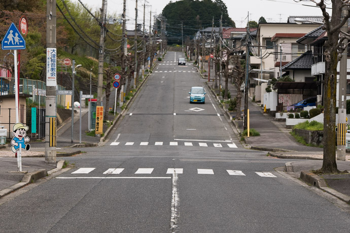 Another Short Straight Climb 400m at 7.8% it's neither long nor steep, but the straightness makes it mentally tougher for me -- Otsu, Shiga, Japan -- Copyright 2017 Jeffrey Friedl, http://regex.info/blog/
