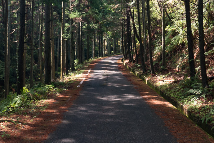 Lovely Road -- Tsuzuki-gun -- Tsuzuki-gun, Kyoto, Japan -- Copyright 2017 Jeffrey Friedl, http://regex.info/blog/ -- This photo is licensed to the public under the Creative Commons Attribution-NonCommercial 4.0 International License http://creativecommons.org/licenses/by-nc/4.0/ (non-commercial use is freely allowed if proper attribution is given, including a link back to this page on http://regex.info/ when used online)