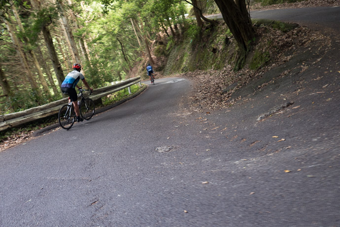 Challenging to photograph on the move on this steep a descent ( taken at 13 kph / 8 mph ) -- Kyoto, Japan -- Copyright 2017 Jeffrey Friedl, http://regex.info/blog/