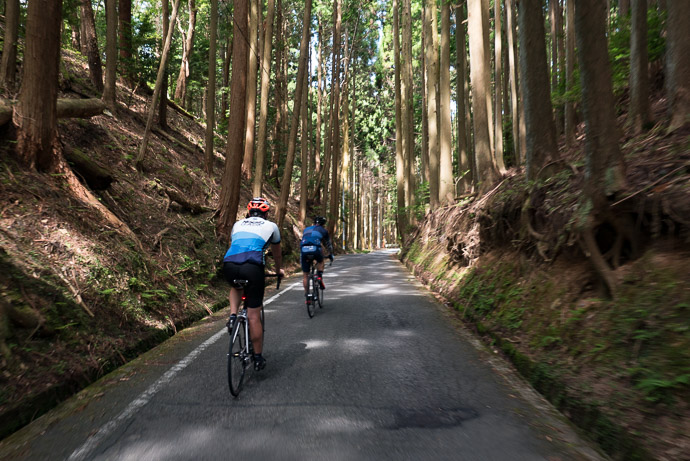 Top of the Atago Climb -- Kyoto, Japan -- Copyright 2017 Jeffrey Friedl, http://regex.info/blog/