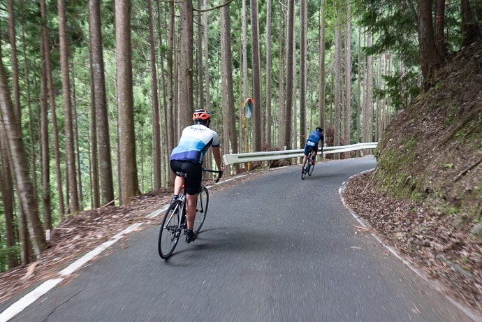 Lovely Little Climb taken during a short descent section at 55 kph (34 mph) -- Kyoto, Japan -- Copyright 2017 Jeffrey Friedl, http://regex.info/blog/