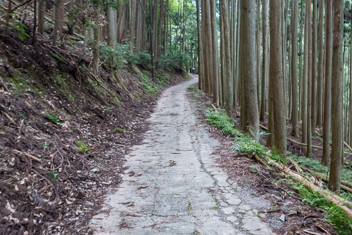 Steep, Broken Concrete as little fun going up as going down -- Kyoto, Japan -- Copyright 2017 Jeffrey Friedl, http://regex.info/blog/