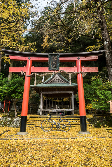 Slightly Off Center -- Iwato Ochiba Shrine (岩戸落葉神社) -- Kyoto, Japan -- Copyright 2017 Jeffrey Friedl, http://regex.info/blog/ -- This photo is licensed to the public under the Creative Commons Attribution-NonCommercial 4.0 International License http://creativecommons.org/licenses/by-nc/4.0/ (non-commercial use is freely allowed if proper attribution is given, including a link back to this page on http://regex.info/ when used online)