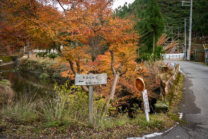""" Sugidani Maple "" "" Famous place, 1km "" -- Kyoto, Japan -- Copyright 2017 Jeffrey Friedl, http://regex.info/blog/ -- This photo is licensed to the public under the Creative Commons Attribution-NonCommercial 4.0 International License http://creativecommons.org/licenses/by-nc/4.0/ (non-commercial use is freely allowed if proper attribution is given, including a link back to this page on http://regex.info/ when used online)"