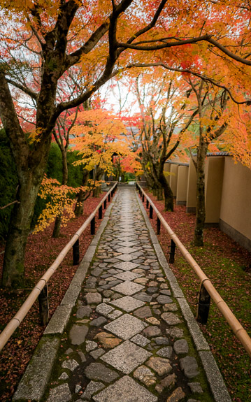desktop background image of the entrance path to the Koetsu-ji Temple (光悦寺), Kyoto Japan, in autumn. -- Koetsu-ji Temple 光悦寺 -- Koetsu-ji Temple (光悦寺) -- Japan, Kyoto -- Copyright 2017 Jeffrey Friedl, http://regex.info/blog/ -- This photo is licensed to the public under the Creative Commons Attribution-NonCommercial 4.0 International License http://creativecommons.org/licenses/by-nc/4.0/ (non-commercial use is freely allowed if proper attribution is given, including a link back to this page on http://regex.info/ when used online)