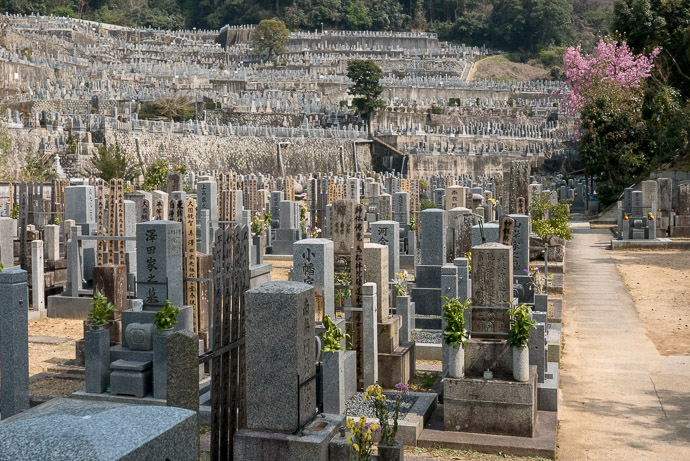 Large Cemetery -- Kyoto, Japan -- Copyright 2018 Jeffrey Friedl, http://regex.info/blog/ -- This photo is licensed to the public under the Creative Commons Attribution-NonCommercial 4.0 International License http://creativecommons.org/licenses/by-nc/4.0/ (non-commercial use is freely allowed if proper attribution is given, including a link back to this page on http://regex.info/ when used online)