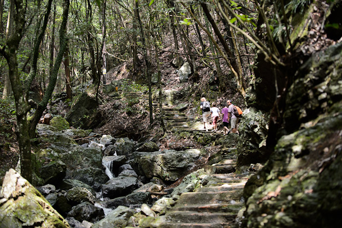 Heading Up  --  Kuuya-taki Waterfall (空也滝)  --  Kyoto, Japan  --  Copyright 2012 Jeffrey Friedl, http://regex.info/blog/