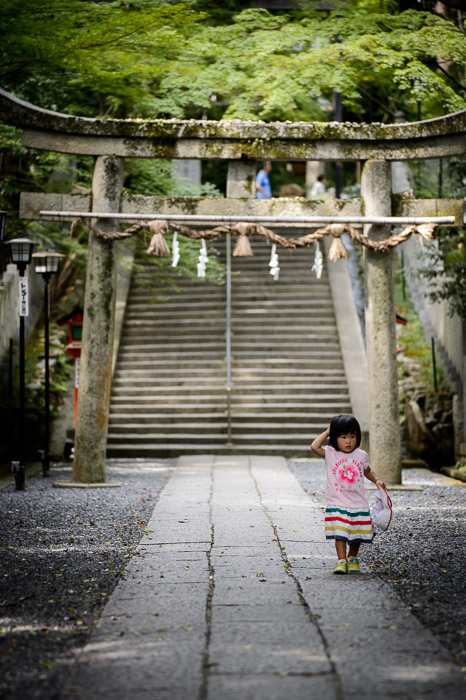 &#8220;Hmm, What Have I Done ?&#8221;   --    --  Nagaokakyo, Kyoto, Japan  --  Copyright 2012 Jeffrey Friedl, http://regex.info/blog/2012-09-23/2098  --  This photo is licensed to the public under the Creative Commons Attribution-NonCommercial 3.0 Unported License http://creativecommons.org/licenses/by-nc/3.0/ (non-commercial use is freely allowed if proper attribution is given, including a link back to this page on http://regex.info/ when used online)