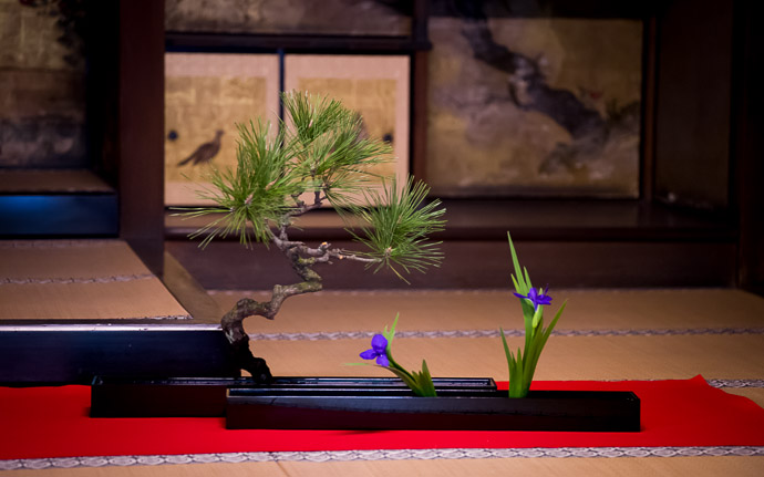 desktop background image of Japanese flower arrangements presented in a formal setting at the Shoren  --  Shoren'in Temple (青蓮院)  --  Kyoto, Japan  --  Copyright 2012 Jeffrey Friedl, http://regex.info/blog/  --  This photo is licensed to the public under the Creative Commons Attribution-NonCommercial 3.0 Unported License http://creativecommons.org/licenses/by-nc/3.0/ (non-commercial use is freely allowed if proper attribution is given, including a link back to this page on http://regex.info/ when used online)