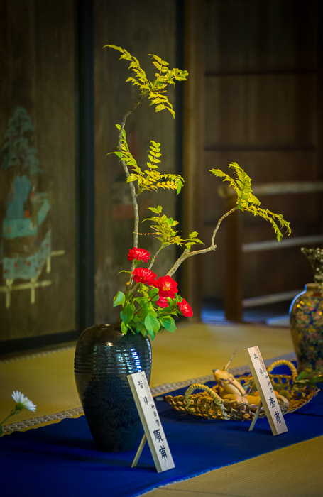 Arrangement by an adult  --  Shoren'in Temple (青蓮院)  --  Kyoto, Japan  --  Copyright 2012 Jeffrey Friedl, http://regex.info/blog/  --  This photo is licensed to the public under the Creative Commons Attribution-NonCommercial 3.0 Unported License http://creativecommons.org/licenses/by-nc/3.0/ (non-commercial use is freely allowed if proper attribution is given, including a link back to this page on http://regex.info/ when used online)