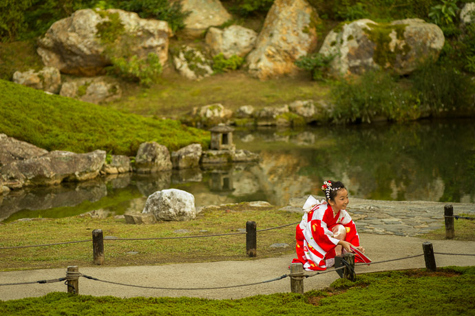 Reunited  --  Shoren'in Temple (青蓮院)  --  Kyoto, Japan  --  Copyright 2012 Jeffrey Friedl, http://regex.info/blog/