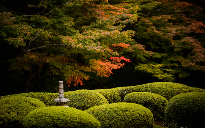 desktop background image of a fall scene at the Shisendo Temple (), Kyoto Japan  --  Tinge of Fall Shisendo Temple (), Kyoto Japan  --  Shisendo Temple ()  --  Copyright 2012 Jeffrey Friedl, http://regex.info/blog/  --  This photo is licensed to the public under the Creative Commons Attribution-NonCommercial 3.0 Unported License http://creativecommons.org/licenses/by-nc/3.0/ (non-commercial use is freely allowed if proper attribution is given, including a link back to this page on http://regex.info/ when used online)