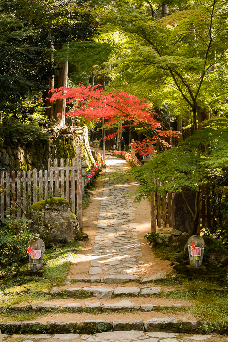 Start of the Path to the main temple building, lined with 1,000 jizou statues  --  Kongorinji Temple ()  --  Echi, Shiga, Japan  --  Copyright 2012 Jeffrey Friedl, http://regex.info/blog/  --  This photo is licensed to the public under the Creative Commons Attribution-NonCommercial 3.0 Unported License http://creativecommons.org/licenses/by-nc/3.0/ (non-commercial use is freely allowed if proper attribution is given, including a link back to this page on http://regex.info/ when used online)