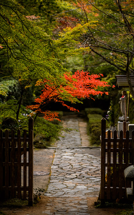 desktop background image of a path gate at the Kongorinji Temple (金剛輪寺), Shiga Prefecture, Japan  --  On The Way Out of the Kongorinji Temple (金剛輪寺)  --  Kongorinji Temple (金剛輪寺)  --  Echi, Shiga, Japan  --  Copyright 2012 Jeffrey Friedl, http://regex.info/blog/  --  This photo is licensed to the public under the Creative Commons Attribution-NonCommercial 3.0 Unported License http://creativecommons.org/licenses/by-nc/3.0/ (non-commercial use is freely allowed if proper attribution is given, including a link back to this page on http://regex.info/ when used online)