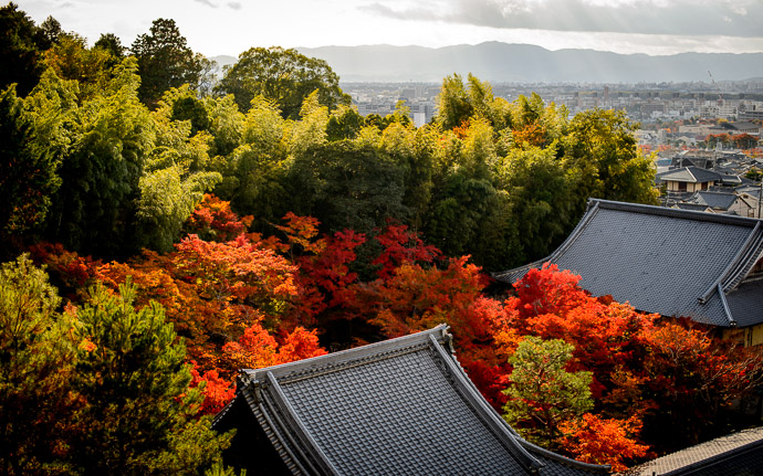 desktop background image of sunshine over the Enkoji Temple (), Kyoto Japan, bathed in fall colors -- Above the Enkouji Temple Kyoto Japan  -- Enkouji Temple () -- Copyright 2012 Jeffrey Friedl, http://regex.info/blog/ -- This photo is licensed to the public under the Creative Commons Attribution-NonCommercial 3.0 Unported License http://creativecommons.org/licenses/by-nc/3.0/ (non-commercial use is freely allowed if proper attribution is given, including a link back to this page on http://regex.info/ when used online)