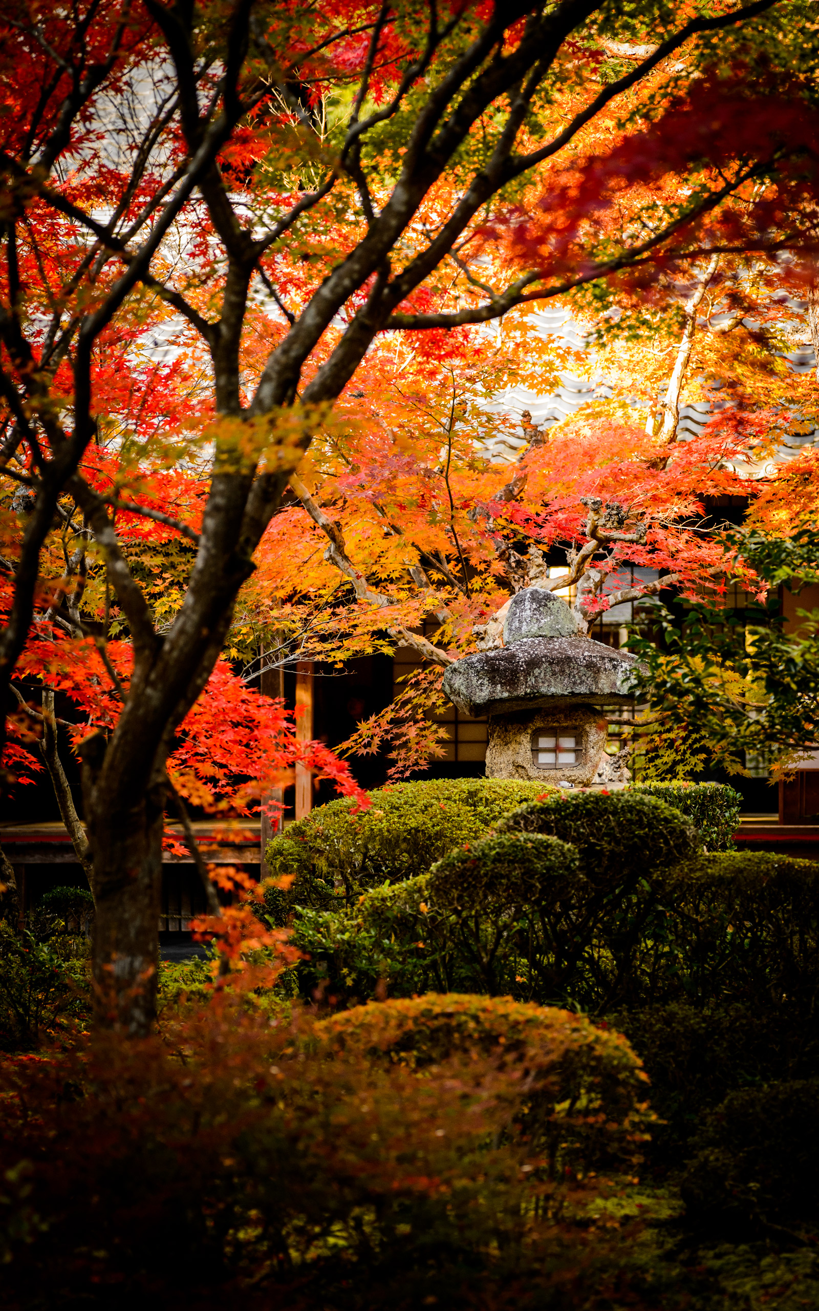 Jeffrey Friedl's Blog » More Japanese-Garden Desktop