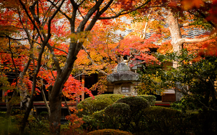 desktop background image of a stone lantern among fall colors in the garden of the Enkouji Temple (圓光寺), Kyoto Japan -- Central Garden -- Enkouji Temple (圓光寺) -- Copyright 2012 Jeffrey Friedl, http://regex.info/blog/ -- This photo is licensed to the public under the Creative Commons Attribution-NonCommercial 3.0 Unported License http://creativecommons.org/licenses/by-nc/3.0/ (non-commercial use is freely allowed if proper attribution is given, including a link back to this page on http://regex.info/ when used online)
