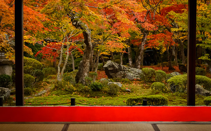 desktop background image of the garden at the Enkouji Temple (圓光寺), Kyoto Japan  --  Finally! やった!  --  Enkouji Temple (圓光寺)  --  Copyright 2012 Jeffrey Friedl, http://regex.info/blog/2013-02-03/2198  --  This photo is licensed to the public under the Creative Commons Attribution-NonCommercial 3.0 Unported License http://creativecommons.org/licenses/by-nc/3.0/ (non-commercial use is freely allowed if proper attribution is given, including a link back to this page on http://regex.info/ when used online)