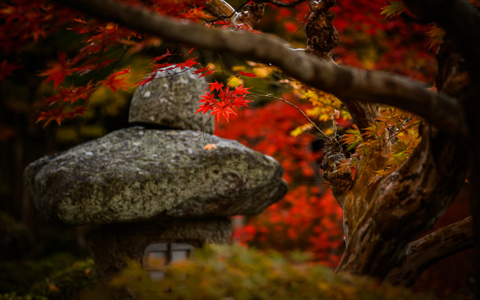 desktop background image of a stone lantern among fall colors in the garden of the Enkouji Temple (圓光寺), Kyoto Japan -- Stone Lantern among Fall Foliage last autumn at the Enkouji Temple (圓光寺), Kyoto Japan -- Enkouji Temple (圓光寺) -- Copyright 2012 Jeffrey Friedl, http://regex.info/blog/ -- This photo is licensed to the public under the Creative Commons Attribution-NonCommercial 3.0 Unported License http://creativecommons.org/licenses/by-nc/3.0/ (non-commercial use is freely allowed if proper attribution is given, including a link back to this page on http://regex.info/ when used online)