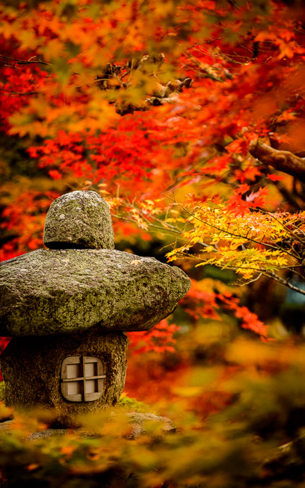 desktop background image of a fall-foliage garden scene from the Enkoji Temple (), Kyoto Japan -- Garden Detail -- Enkouji Temple () -- Copyright 2012 Jeffrey Friedl, http://regex.info/blog/ -- This photo is licensed to the public under the Creative Commons Attribution-NonCommercial 3.0 Unported License http://creativecommons.org/licenses/by-nc/3.0/ (non-commercial use is freely allowed if proper attribution is given, including a link back to this page on http://regex.info/ when used online)
