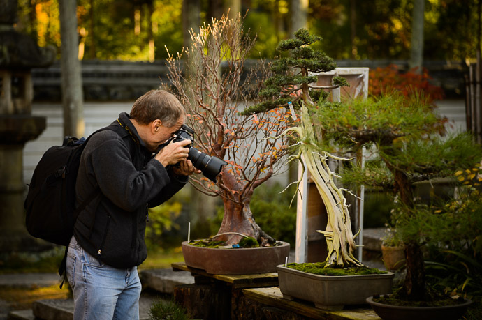 Old Paul's photographing a 900-dollar 100-year-old bonsai tree ( the brown one next to it is 150 years old and runs $3,300 )  --  Shouzan (しょうざん)  --  Kyoto, Japan  --  Copyright 2012 Jeffrey Friedl, http://regex.info/blog/  --  This photo is licensed to the public under the Creative Commons Attribution-NonCommercial 3.0 Unported License http://creativecommons.org/licenses/by-nc/3.0/ (non-commercial use is freely allowed if proper attribution is given, including a link back to this page on http://regex.info/ when used online)