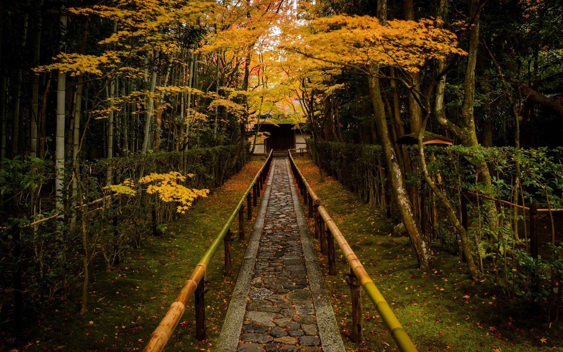 jeffrey friedls blog 187 that amazing entrance path of