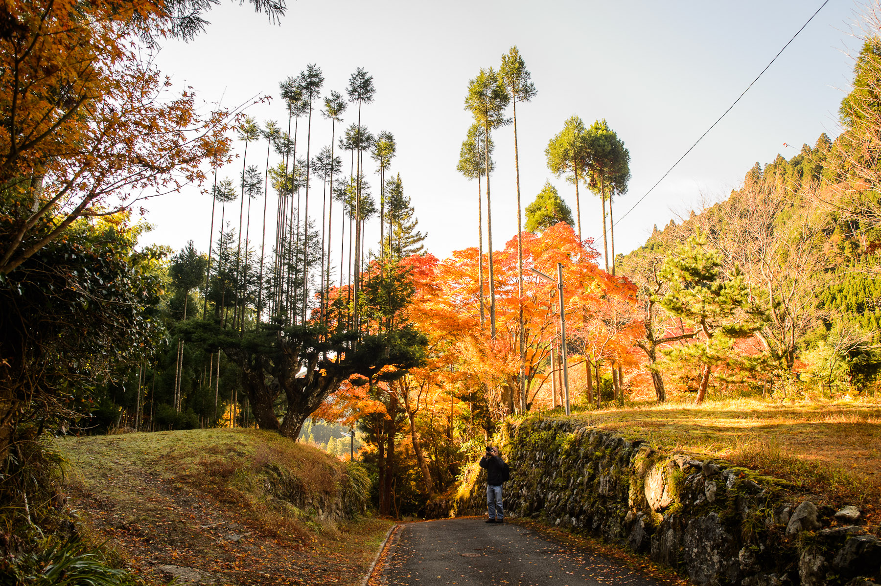 Jeffrey Friedl's Blog » A Few Pretty Pictures from Kyoto's Middle ...