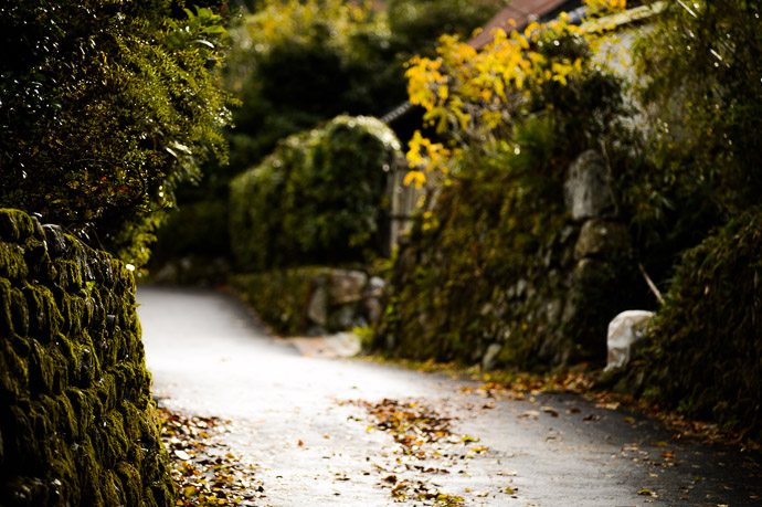 Country Lane -- Near the Sanzen-in Temple () -- Kyoto, Japan -- Copyright 2012 Jeffrey Friedl, http://regex.info/blog/ -- This photo is licensed to the public under the Creative Commons Attribution-NonCommercial 3.0 Unported License http://creativecommons.org/licenses/by-nc/3.0/ (non-commercial use is freely allowed if proper attribution is given, including a link back to this page on http://regex.info/ when used online)