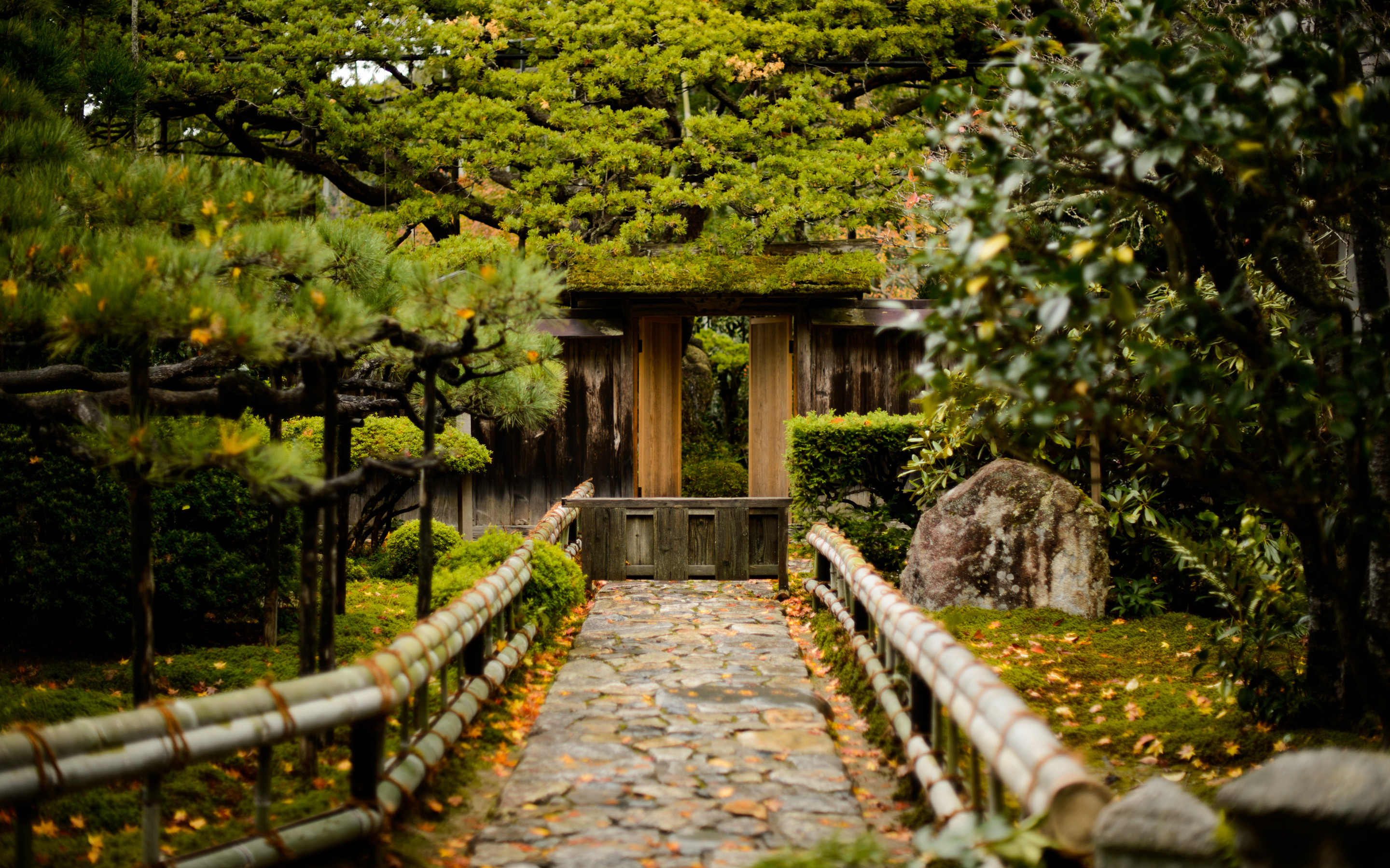Jeffrey Friedl\'s Blog » First Visit to Kyoto\'s Housen-in Temple