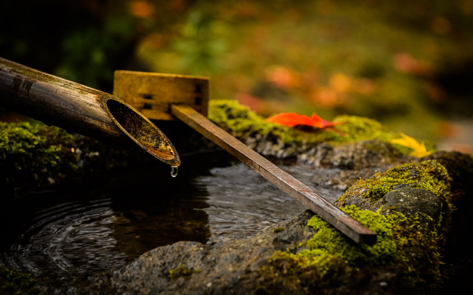 desktop background image of a water basin in the garden of the Housen-in Temple (), Kyoto Japan -- One More Water-Basin Shot Housen-in Temple () -- Housen-in Temple () -- Copyright 2012 Jeffrey Friedl, http://regex.info/blog/ -- This photo is licensed to the public under the Creative Commons Attribution-NonCommercial 3.0 Unported License http://creativecommons.org/licenses/by-nc/3.0/ (non-commercial use is freely allowed if proper attribution is given, including a link back to this page on http://regex.info/ when used online)