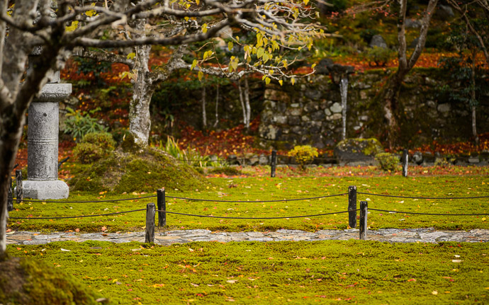 desktop background image of path flanked by moss, at the Shorin-in Temple (), Kyoto Japan -- Shorin-in Temple () -- Shorin-in Temple () -- Copyright 2012 Jeffrey Friedl, http://regex.info/blog/ -- This photo is licensed to the public under the Creative Commons Attribution-NonCommercial 3.0 Unported License http://creativecommons.org/licenses/by-nc/3.0/ (non-commercial use is freely allowed if proper attribution is given, including a link back to this page on http://regex.info/ when used online)