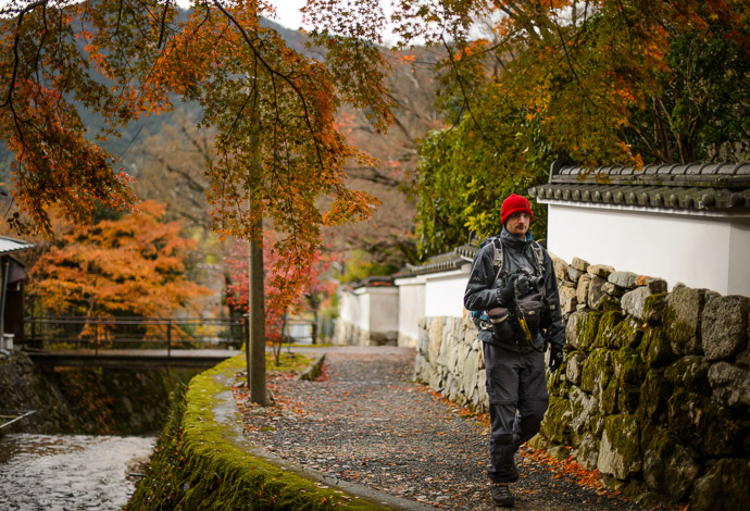 A Damien in its Natural Environment near the Jikkouin Temple (), Kyoto Japan  --  Copyright 2012 Jeffrey Friedl, http://regex.info/blog/