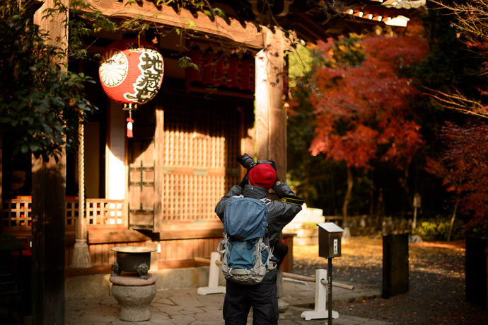 Pro Stance at the Sekisanzen-in Temple (), Kyoto Japan  --  Sekisanzen-in Temple ()  --  Copyright 2012 Jeffrey Friedl, http://regex.info/blog/