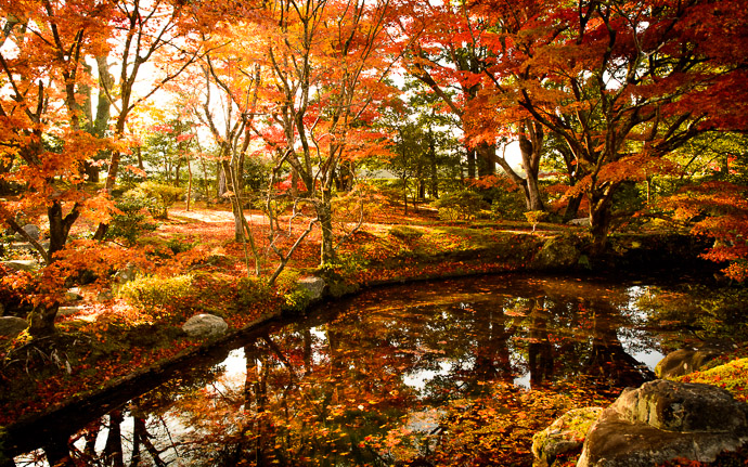 desktop background image of a fall-foliage scene at the Shugakuin Imperial Villa (修学院離宮), Kyoto Japan  --  Just Passing Through we were marched past this garden single-file, with nary a moment to pause  --  Shugakuin Imperial Villa (修学院離宮)  --  Copyright 2012 Jeffrey Friedl, http://regex.info/blog/  --  This photo is licensed to the public under the Creative Commons Attribution-NonCommercial 3.0 Unported License http://creativecommons.org/licenses/by-nc/3.0/ (non-commercial use is freely allowed if proper attribution is given, including a link back to this page on http://regex.info/ when used online)