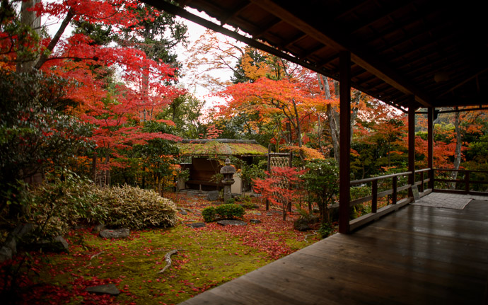 desktop background image of a fall-foliage scene at the Daihouin Temple (妙心寺大法院), Kyoto Japan  --  View From The Side  --  Daihouin Temple (大法院)  --  Copyright 2012 Jeffrey Friedl, http://regex.info/blog/  --  This photo is licensed to the public under the Creative Commons Attribution-NonCommercial 3.0 Unported License http://creativecommons.org/licenses/by-nc/3.0/ (non-commercial use is freely allowed if proper attribution is given, including a link back to this page on http://regex.info/ when used online)