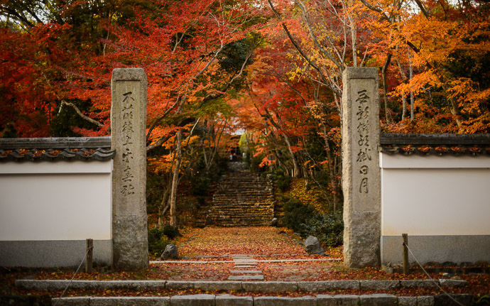 desktop background image of the entrance path to the Jojuji Temple (浄住寺、京都市嵐山) in Kyoto, Japan, bathed in fall colors -- Jojuji Temple (浄住寺 -- Copyright 2012 Jeffrey Friedl, http://regex.info/blog/ -- This photo is licensed to the public under the Creative Commons Attribution-NonCommercial 4.0 International License http://creativecommons.org/licenses/by-nc/4.0/ (non-commercial use is freely allowed if proper attribution is given, including a link back to this page on http://regex.info/ when used online)