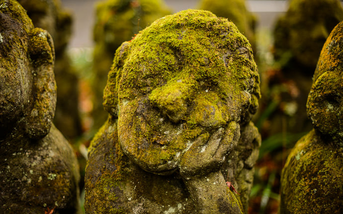 desktop background image of moss-covered statues at the delightful Otaginenbutsuji Temple (愛宕念仏寺) in Kyoto Japan -- Nodding Off -- Otaginenbutsuji Temple (愛宕念仏寺) -- Copyright 2012 Jeffrey Friedl, http://regex.info/blog/ -- This photo is licensed to the public under the Creative Commons Attribution-NonCommercial 4.0 International License http://creativecommons.org/licenses/by-nc/4.0/ (non-commercial use is freely allowed if proper attribution is given, including a link back to this page on http://regex.info/ when used online)