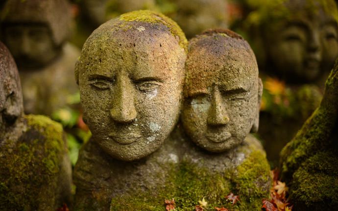 desktop background image of moss-covered statues at the delightful Otaginenbutsuji Temple (愛宕念仏寺) in Kyoto Japan -- Deep this has an intensity I'm unable to put into words -- Otaginenbutsuji Temple (愛宕念仏寺) -- Copyright 2012 Jeffrey Friedl, http://regex.info/blog/ -- This photo is licensed to the public under the Creative Commons Attribution-NonCommercial 4.0 International License http://creativecommons.org/licenses/by-nc/4.0/ (non-commercial use is freely allowed if proper attribution is given, including a link back to this page on http://regex.info/ when used online)