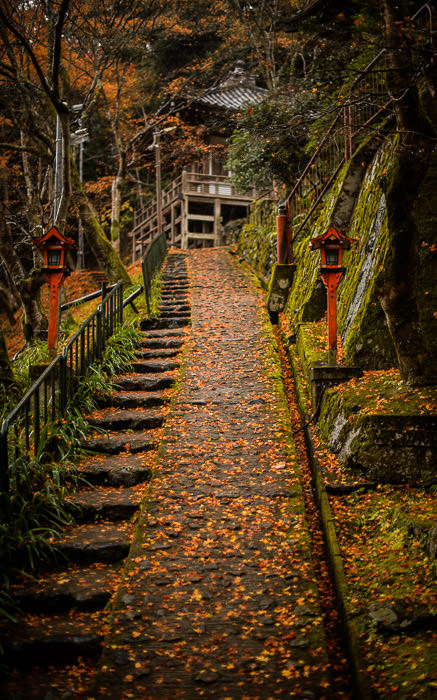 desktop background image of a path at the Otagi Nenbutsuji Temple (愛宕念仏寺), Kyoto Japan -- Otaginenbutsuji Temple (愛宕念仏寺) -- Copyright 2012 Jeffrey Friedl, http://regex.info/blog/ -- This photo is licensed to the public under the Creative Commons Attribution-NonCommercial 4.0 International License http://creativecommons.org/licenses/by-nc/4.0/ (non-commercial use is freely allowed if proper attribution is given, including a link back to this page on http://regex.info/ when used online)