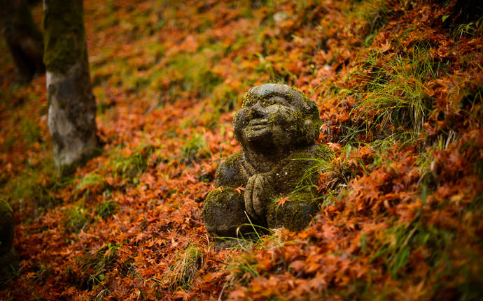 desktop background image of moss-covered statues at the delightful Otaginenbutsuji Temple (愛宕念仏寺) in Kyoto Japan -- Private Meditation -- Otaginenbutsuji Temple (愛宕念仏寺) -- Copyright 2012 Jeffrey Friedl, http://regex.info/blog/ -- This photo is licensed to the public under the Creative Commons Attribution-NonCommercial 4.0 International License http://creativecommons.org/licenses/by-nc/4.0/ (non-commercial use is freely allowed if proper attribution is given, including a link back to this page on http://regex.info/ when used online)