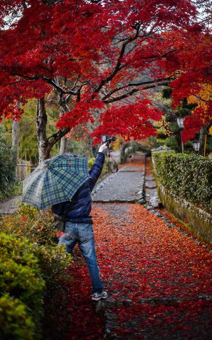 I Wonder what kind of shot he got  --  Arashiyama ()  --  Kyoto, Japan  --  Copyright 2012 Jeffrey Friedl, http://regex.info/blog/  --  This photo is licensed to the public under the Creative Commons Attribution-NonCommercial 3.0 Unported License http://creativecommons.org/licenses/by-nc/3.0/ (non-commercial use is freely allowed if proper attribution is given, including a link back to this page on http://regex.info/ when used online)