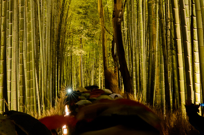 Flash Layer of umbrellas hides the crowds at the Arashiyama Bamboo Forest (嵐山竹 やぶ) Kyoto Japan  --  Arashiyama Bamboo Forest (嵐山竹やぶ)  --  Copyright 2012 Jeffrey Friedl, http://regex.info/blog/  --  This photo is licensed to the public under the Creative Commons Attribution-NonCommercial 3.0 Unported License http://creativecommons.org/licenses/by-nc/3.0/ (non-commercial use is freely allowed if proper attribution is given, including a link back to this page on http://regex.info/ when used online)